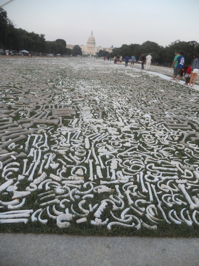 Ceramic bones cover the National Mall